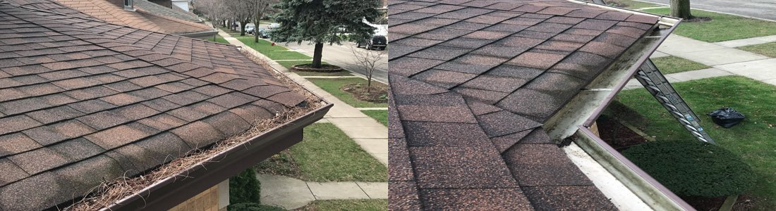 Gutter Cleaning Glenview
